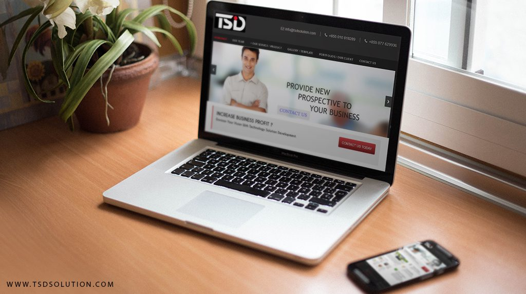 Website design mockup from TSD